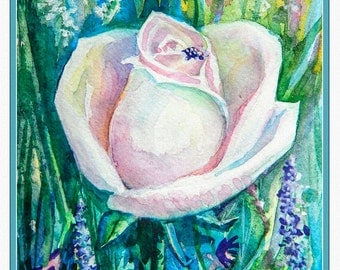 Watecolor painting illustration print art- The White Rose