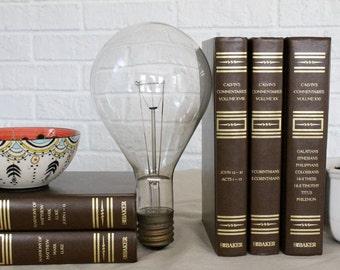 Large Edison Bulb - General Electric