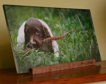 10mm Acrylic Photo Panel