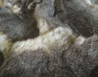 Silver rabbit pelt