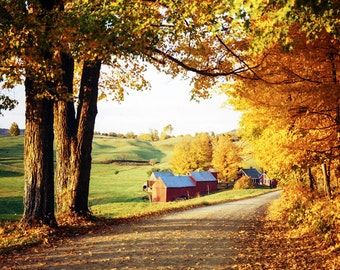 Jenney Farm, New England, Autumn Colors, Reading Vermont, Favorite Fall Place, Red Barns, Orange Trees, Winding Road, Wall Decor