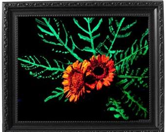 Glow, Flower, photography, art, A3, shabby chic, black, frame
