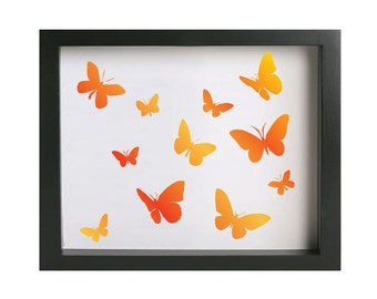 Butterflies - colourful
