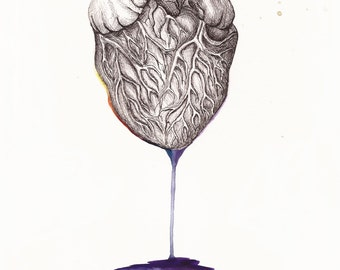 Heart - physical form