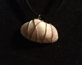Wire wrapped clamshell necklace