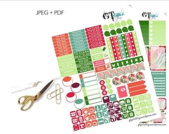 Hibiscus Weekly Happy Planner Kit// Printable Planner Stickers