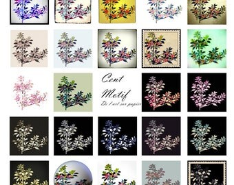 "Digital clipart of qualifications for your handicrafts, scrabooking, collage... Flowers, 2 ""x 2"""