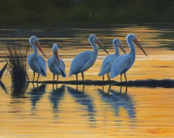 """Fine art print of an original oil painting titled """"White Pelicans"""""""