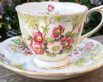 Pretty in Pink-Royal Albert Wild Rose Teacup and Saucer