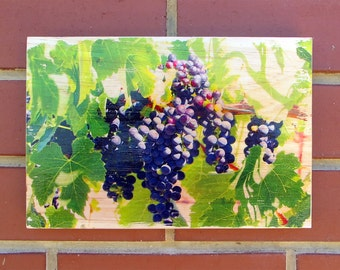 rustic wood wall hanging and audio tour - Shiraz wine grapes