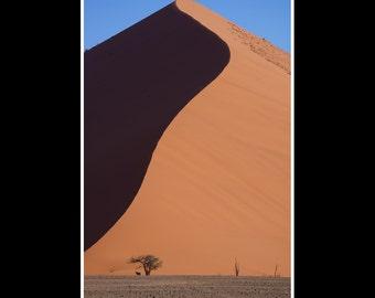 Red dune print Africa nature wildlife photography fine art photo 12x8