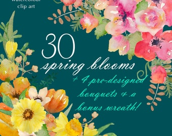 Watercolor Flower Clip Art Collection - Hand Painted Graphics - Spring Blooms