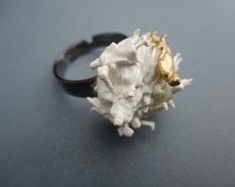 White/Gold ring