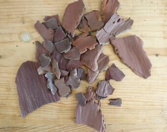 Terrarium pine bark, Laricio Pine bark, vivarium supplies, craft supplies, eco friendly, natural decoration, forest decor