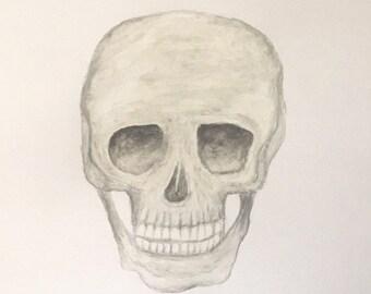 Watercolour Skull Wall Art