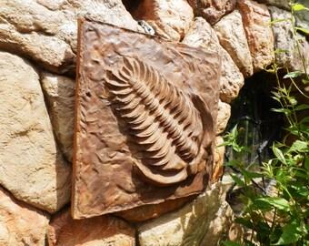Wall Plaque Prehistoric Trilobite Fossil.