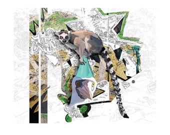 Lemur Bird Print