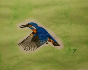 Kingfisher (original painting)