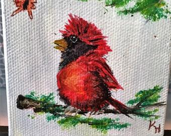 Cardinal/ Red Bird