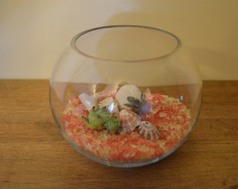Fishbowl Succulent Planters