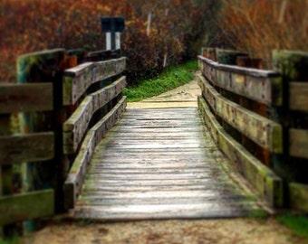 Asilomar Bridge, Beach Path Bridge, Asilomar Path, Beach Bridge, Fall at Asilomar Beach