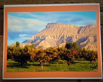 Photo, Nature, Thinking of You, Thank You, Miss You Greeting Card