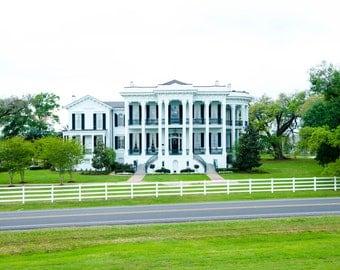 Nottoway Plantation- White Castle, Louisiana- Photograph