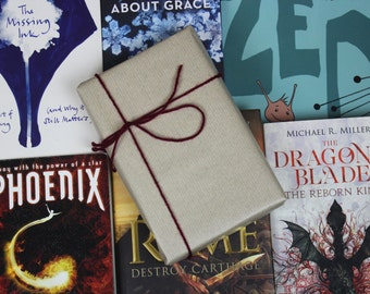 The Under-Hyped Reads Book Box! (Used Edition)