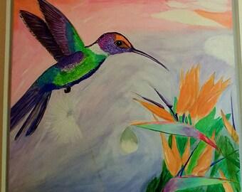 The Hummingbird and the bird of paradise