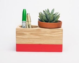 Desktop Pencil Cup Planter