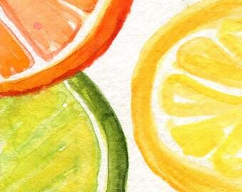 Orange, Lemon, Lime slices Watercolors Paintings Original, Fruit Series, ACEO Original Art Card original watercolor of citrus fruit, lemon