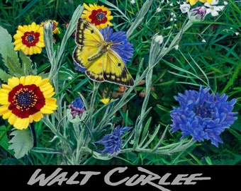 Original floral oil painting, Butterfly and Wildflowers, spring garden flowers art by Walt Curlee