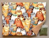 Catnip Mat and Catnip  Cats in Funky Sunglasses Refillable Reversible