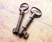 Rustic Antique Skeleton Key Duo