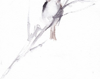 bird on a branch 5 x 7 print