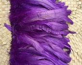 Coque feathers in Grape purple color- length 6-8 inches- Tahitian costume
