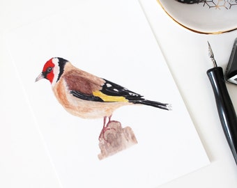 The Goldfinch postcard, watercolor illustration