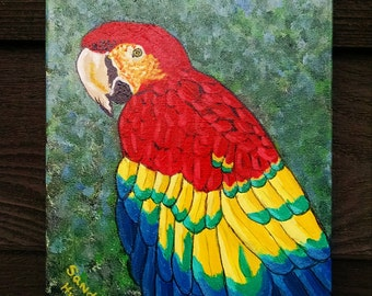 Macaw, 8x10 Acrylic painting