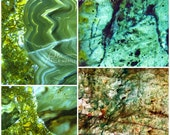 Neutral print set, 4 photo set, gallery wall art, wall art set, four print set, green decor, green art set, nature print set, green photo