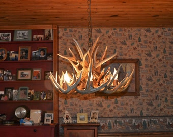 Brand New 26 inch Whitetail Deer Shed Antler Chandelier with center Down Light,