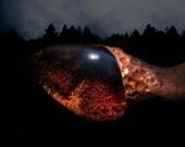 Black Mars Magic ~ Wand Shaman Oregon Crystals Natural Lodolite, Black Kyanite and Driftwood by the river
