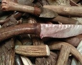 Stone Knife - Alabama Coastal Blade hafted to Stag Handle with Turquoise Inlay / Flint Knapped / Arrowhead / flint knives