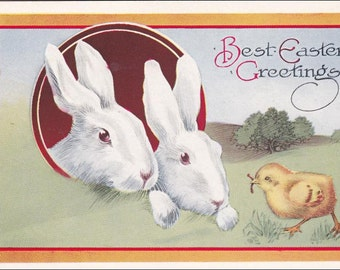 Easter postcard Sweet White Easter Bunny Rabbits ,  chick holding worm, eggshell  Vintage Easter  Postcard, Pink Perfection post card