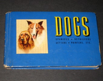 Vintage(1941) Blue Book of Dogs - Illustrated - Spaniels, Retrievers, Setters, Pointers, etc.
