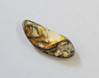 Boulder Opal, Rare, Free Shipping, Natural Australian Wood Replacement Opal - Item 505163