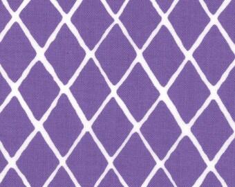 Summersville Spring 1 & 1/2 Yard Remnant 31717-15 Purple