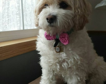 Dog Bow Tie,  Cat Bow Tie,  Crochet Bow, Pet Accessories, Cotton Dog Bow, Custom Dog Bow, MADE TO ORDER in your size and color choices,