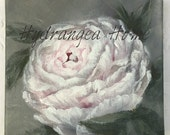 Pink Peony, 6x6 canvas, acrylic painting, original floral painting