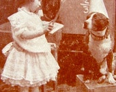 Three  Original Antique Rare 1800s Victorian Edwardian Real Photo Discipline Old Worn Trade Playing Card Girl with Dog wearing a party hat