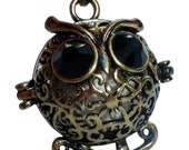 YOur perSOnal STYlish Essential oil necklace diffuser Steampunk Baby owl d2 0
